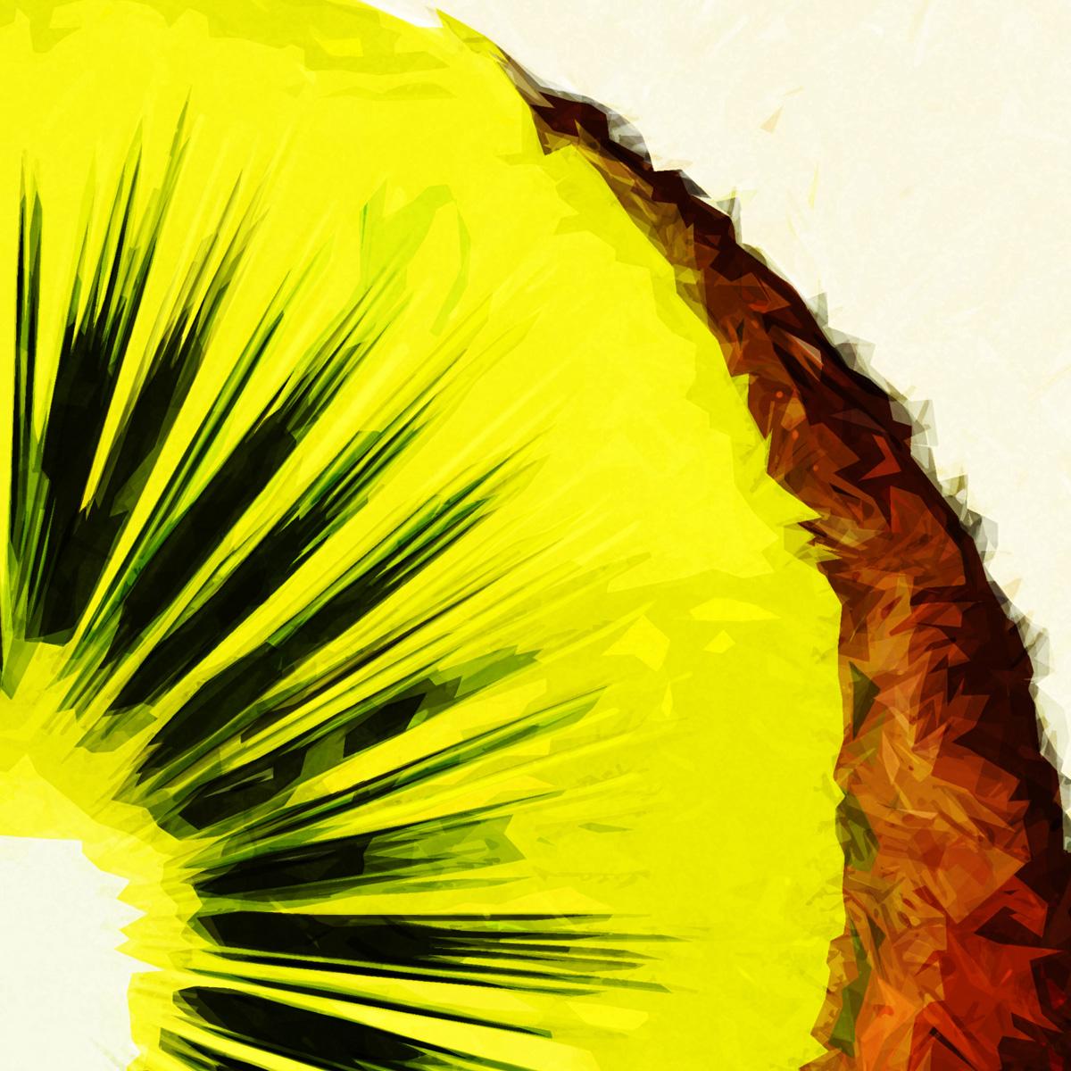 kiwi3